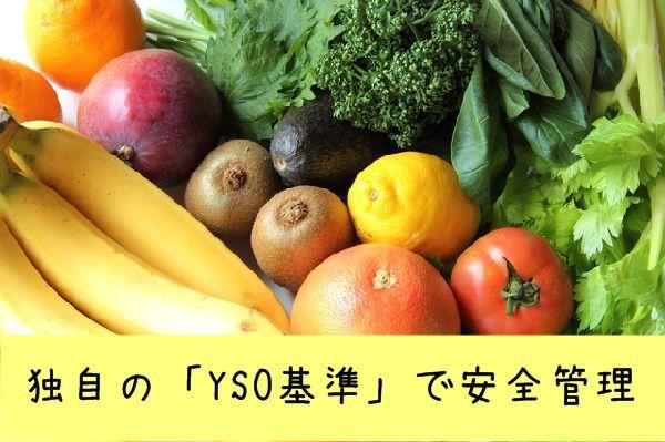ヨシケイ・YSO基準