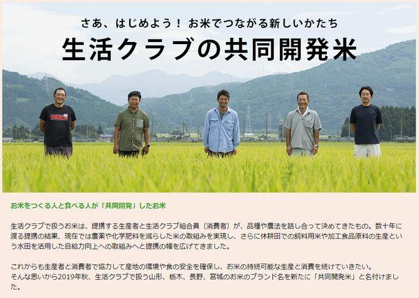 共同開発米